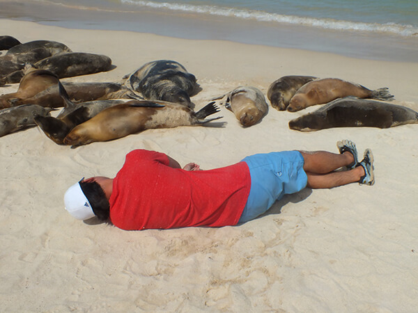 G Adventures Sea Lions Galapagos Islands