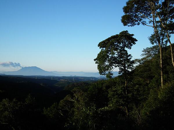 Japan Travel Sakurajima
