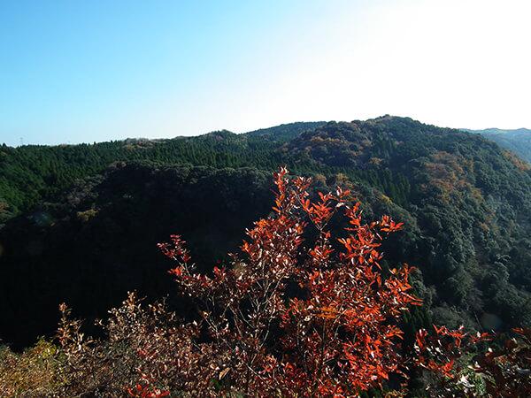 Japan Travel Tips Kagoshima