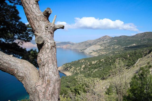 Crimea Ukraine Russia Hiking Travel Nature 2
